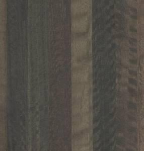 893 - - Eucalyptus SP