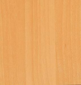 948 - Palm Beech CF