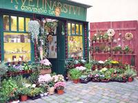 ყვავილების მაღაზიის რეკლამა